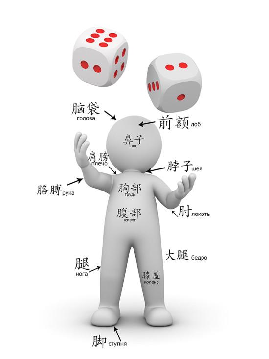части тела на китайском языке
