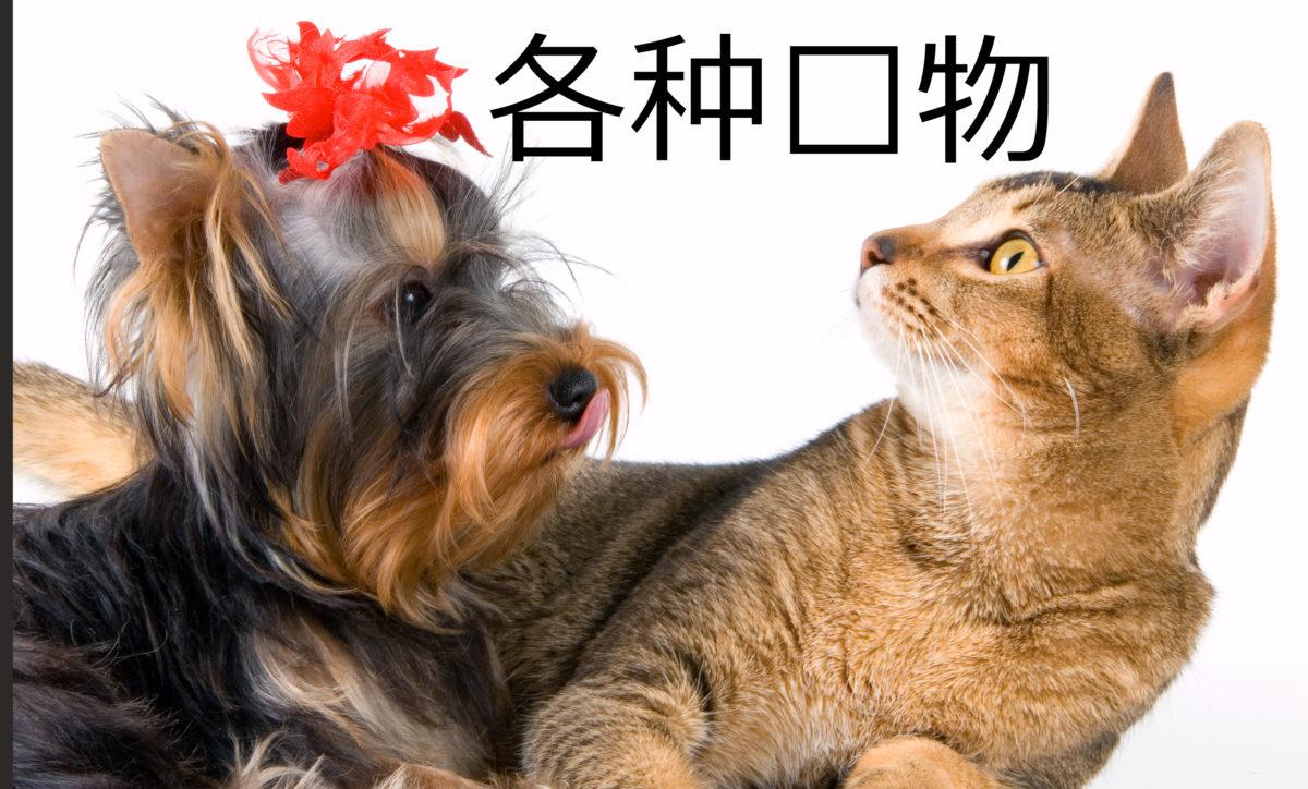 Урок китайского языка. Домашние животные. Начальный уровень